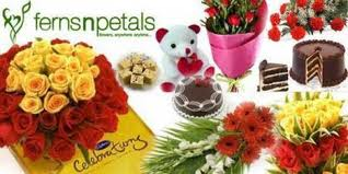 fernsnpetals discount coupons